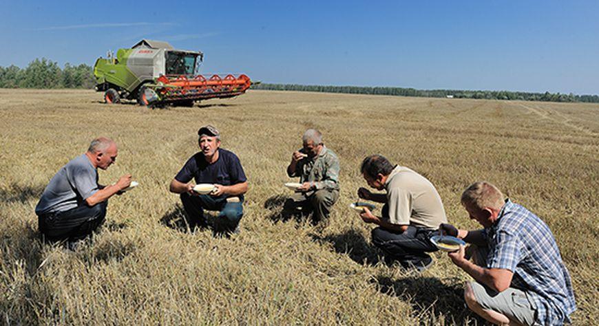 Сельхозкооперативы Красноярского края получили по 5 миллионов на развитие